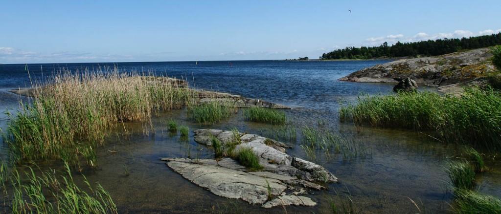 Seelandschaft | Schweden | 2012 | Fotograf: Ralf Wiechers