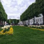 Grünanlagen in der ganzen Stadt