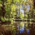 Lyngby hat tolle Natur zu bieten