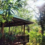 Exotischer naturnaher CoWorkingSpace