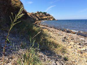 Küstenlinie auf Lesbos